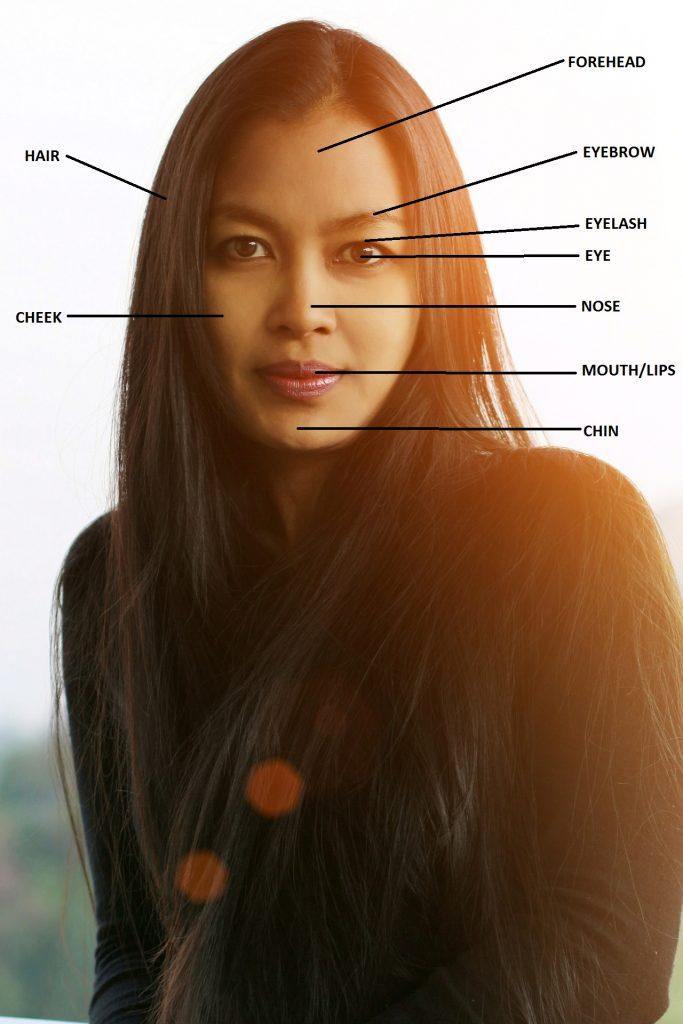 Nauka angielskiego online - Angielski Słówka - Blog o języku angielskim - Elements of face