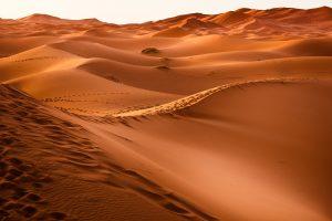 Nauka angielskiego online - Angielski Słówka - Blog o języku angielskim - Dunes