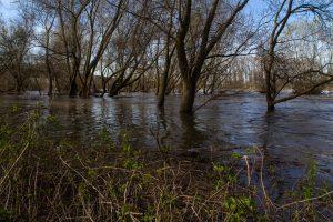Nauka angielskiego online - Angielski Słówka - Blog o języku angielskim - Flood plain