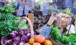 Nauka angielskiego online - Angielski Słówka - Blog o języku angielskim - Organic food