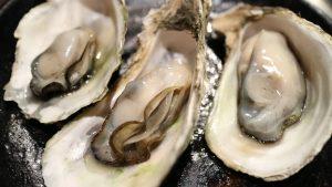 Nauka angielskiego online - Angielski Słówka - Blog o języku angielskim - Oysters