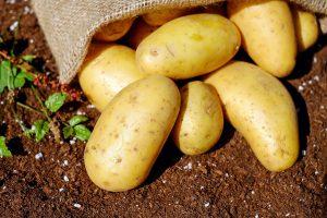 Nauka angielskiego online - Angielski Słówka - Blog o języku angielskim - Potatoes