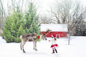 Nauka angielskiego online - Angielski Słówka - Blog o języku angielskim - Reindeer